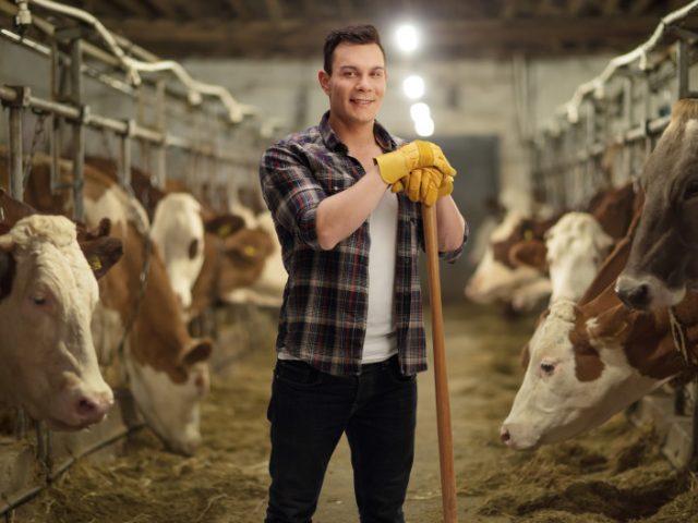 Como escolher fornecedor de insumos agropecuários