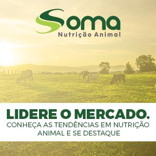 Conheça as tendências em nutrição animal