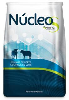 Núcleos gado leiteiro