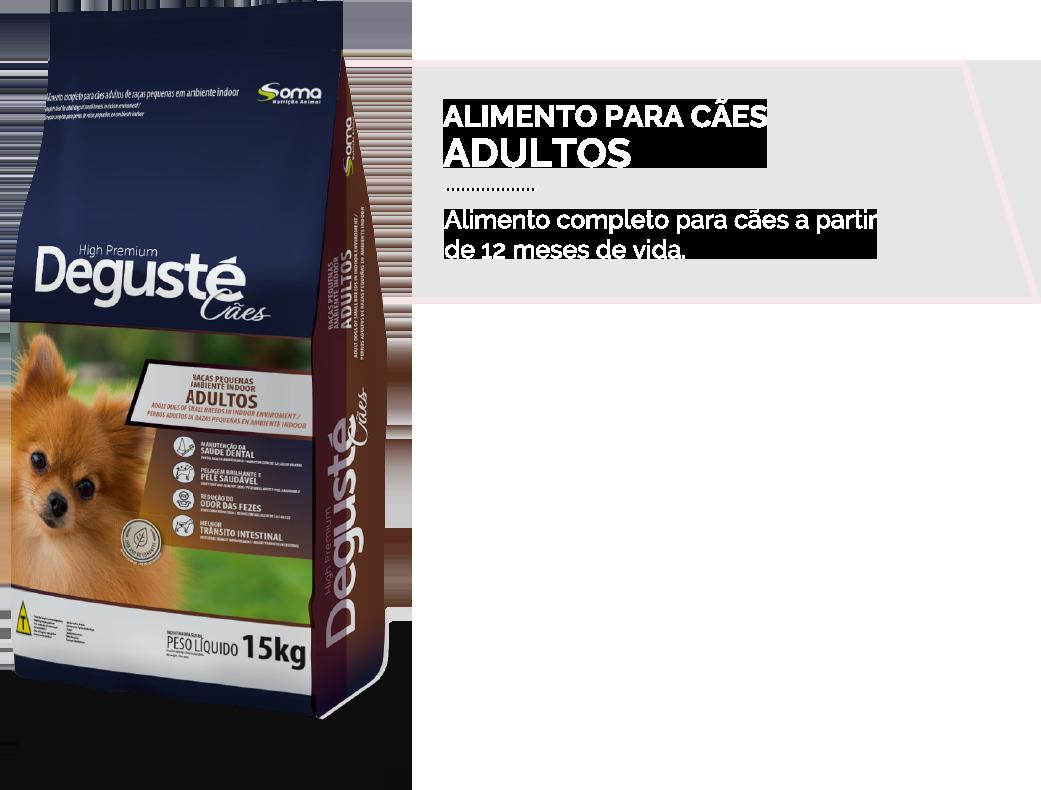 Degustè High Premium adulto RP