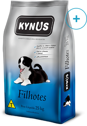Kynus – Filhotes