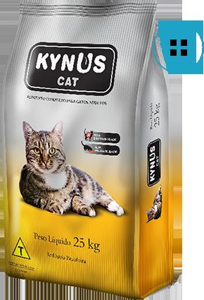 Kynus – Cats